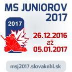 MSJ17